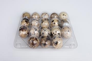 Контейнер для перепелиных яиц на 18 штук